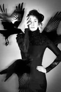 le-corbeau1b